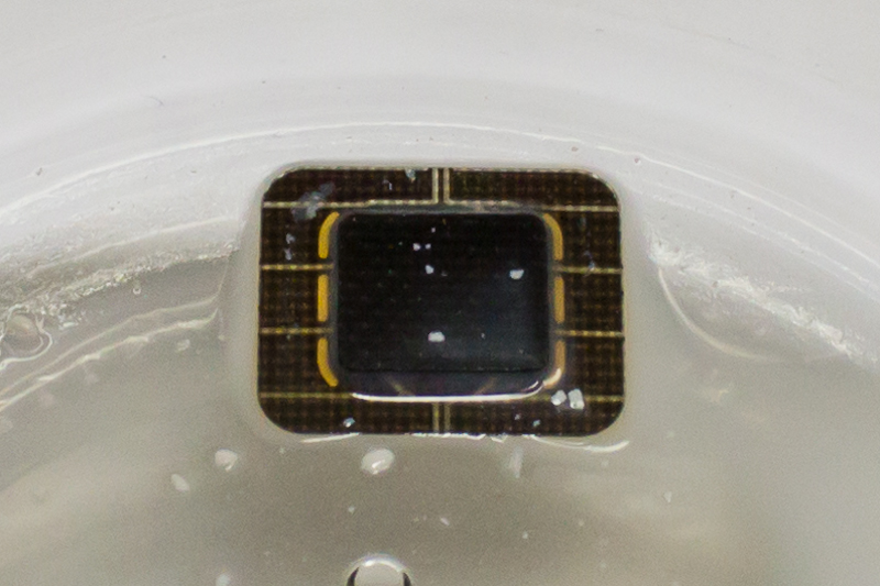 A SIM card being rinsed in acetone. Only the microchip and contacts remain.