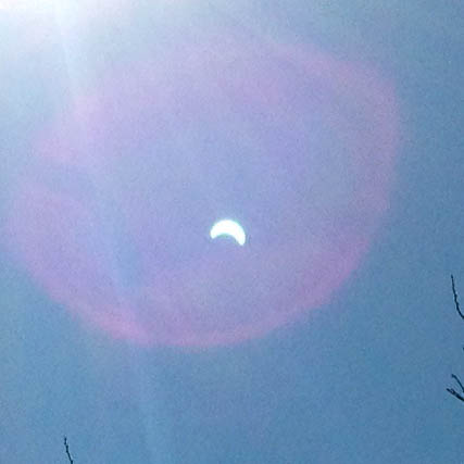 Solar Eclipse Photo  / iPhone Camera (Lense Flare)